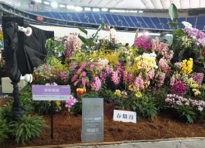 獲得景觀布置獎的台灣業者作品