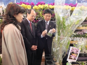 台灣蘭花產銷發展協會理事長高紀清(圖右),和沈斯淳代表賢伉儷說明蘭苗培植的方法