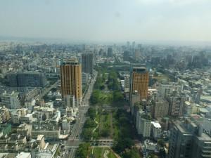 中央に伸びる緑地帯が草悟道