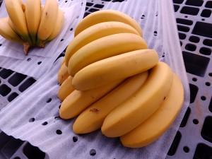 鮮やかなバナナ。