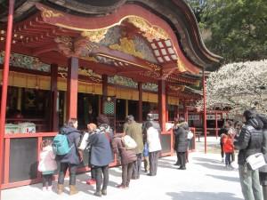 台湾人観光客の人気も高い太宰府天満宮