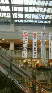 宮崎空港内に告知