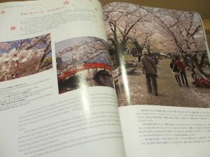 機内誌で福岡の魅力を特集