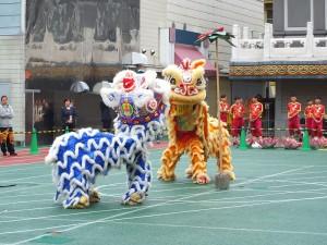 橫濱中華學院中高學部的學生表演舞獅