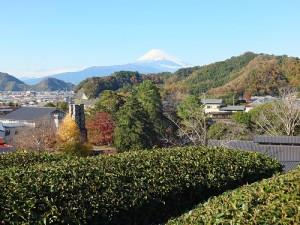 站在韮山反射爐後的山丘上,可遠眺富士山和韮山反射爐,將美景盡收眼底