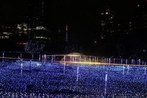 從星光花園可以遠眺東京鐵塔