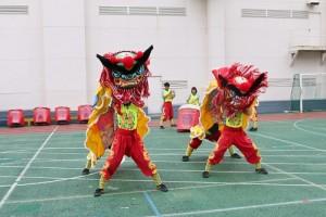 國立台灣體育運動大學學生在橫濱中華學院創校119周年文化祭上表演台灣獅