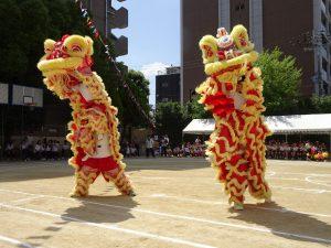 舞獅隊演出雄獅震中華為學校慶生