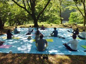 森林瑜珈可以放鬆身心